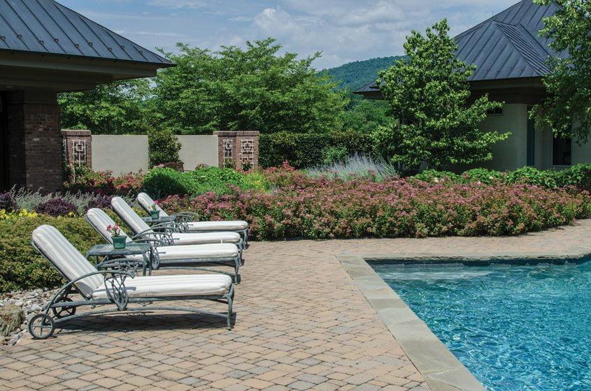 A lush poolscape  and garden by McHale Landscape Design