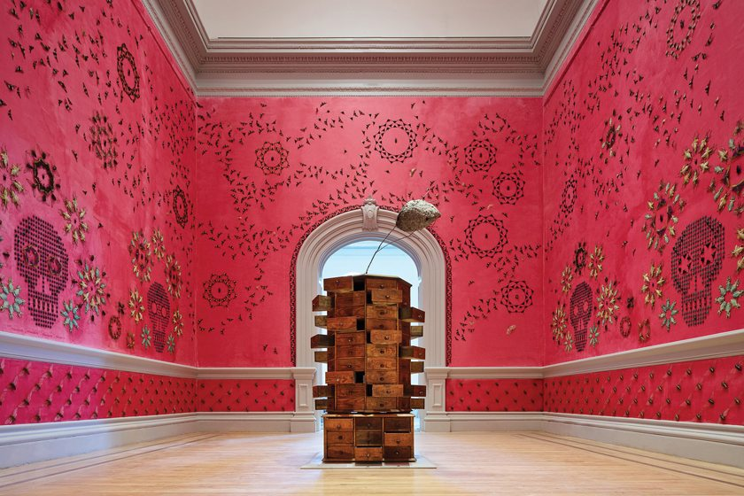A rosy wall patterned with real insects is part of the inaugural exhibit. © Ron Blunt