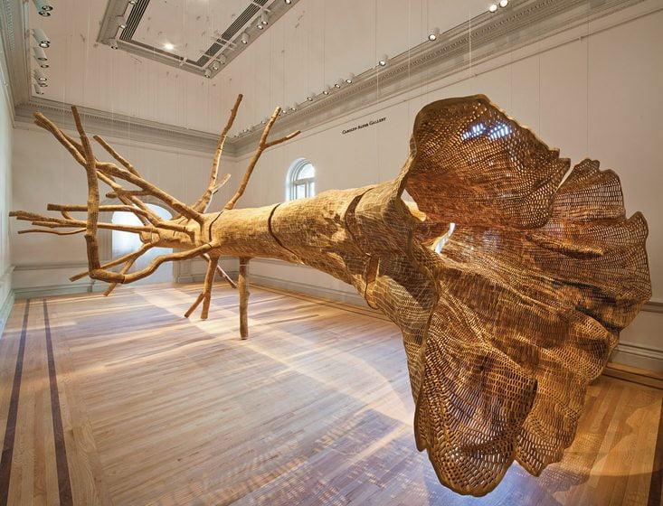 Artist John Grade used reclaimed cedar to recreate a tree as old as the Renwick building. © Ron Blunt