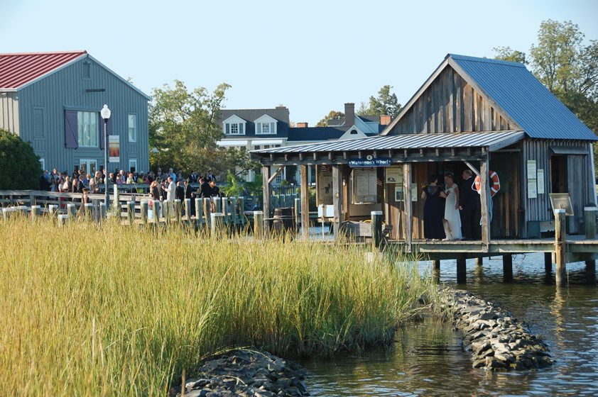 The Chesapeake Bay Maritime Museum's outbuildings nestle beside a living shoreline.