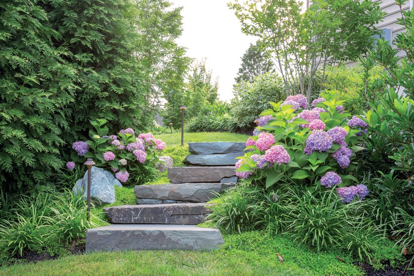 The Kleinberg garden in Annandale, Virginia, designed by Botanical Decorators. June, 2015