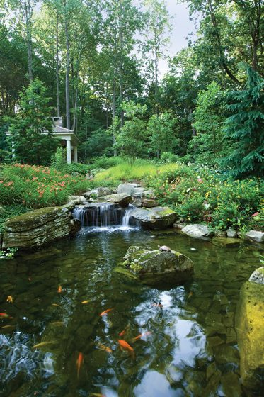 Howard Cohen also designed a picturesque koi pond in Great Falls. © Brandon Rossen