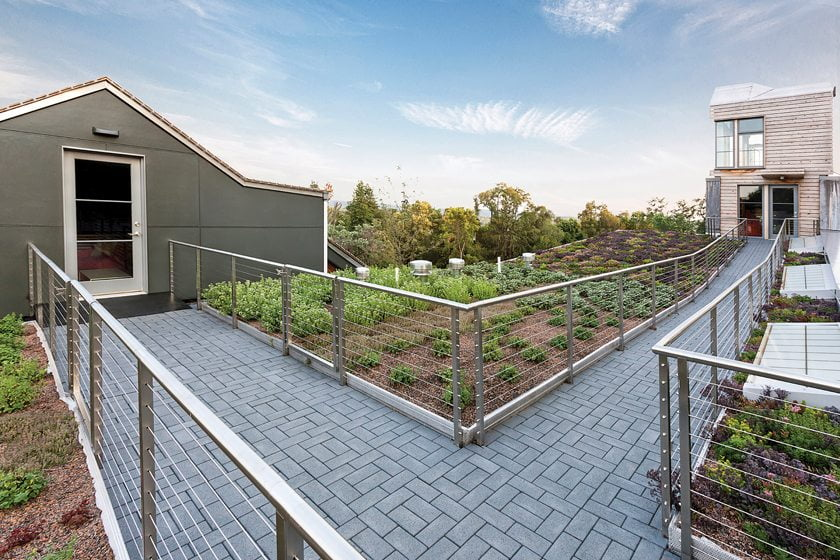 The living roof boasts an herb garden and a recycled-rubber path.