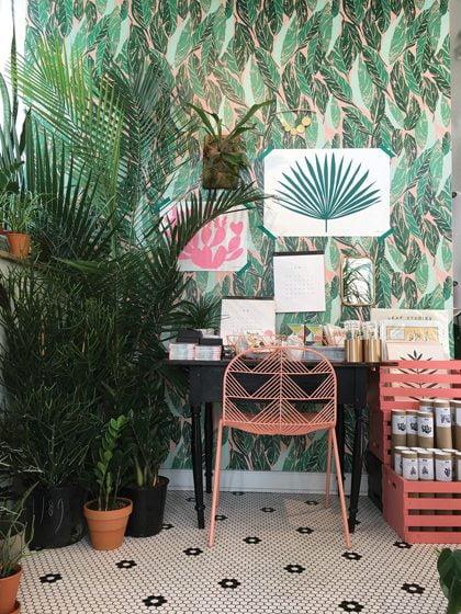 Potted plants frame a desk vignette at Little Leaf on S Street.