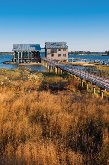 A boardwalk leads from the forecourt over marshland to the two wings of the house.