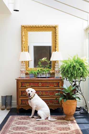 The couple's dog, Cotton, poses before a 19th-century French chinoiserie chest.