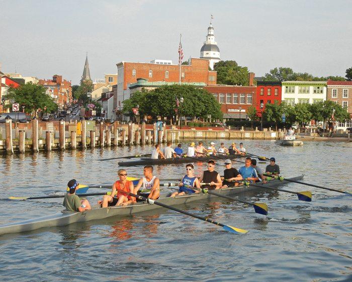 Crew teams row by City Dock.