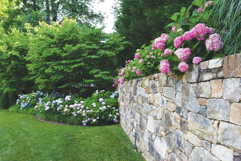 Clarendon Road Garden, Fine Earth Landscape, Inc. Photo: Hilary Schwab