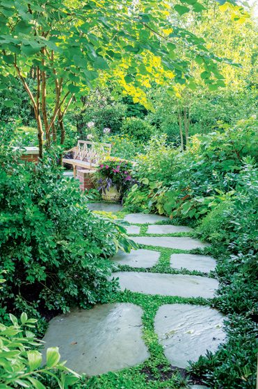 Alexandria Residence , Planted Earth Landscaping, Inc.  Photo: Thomas Walker