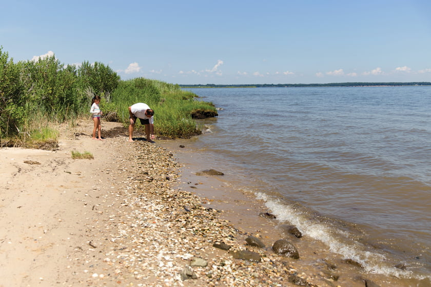 Beachcombing in the Eastern Neck National Wildlife Refuge.