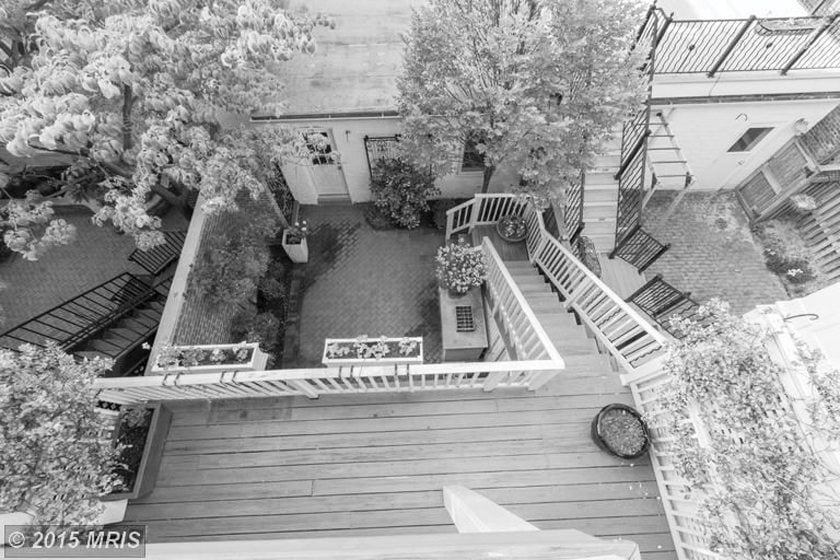 BEFORE: The backyard.