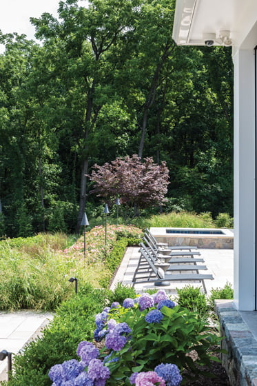 Soft but structured landscaping borders the pool. © Angie Seckinger