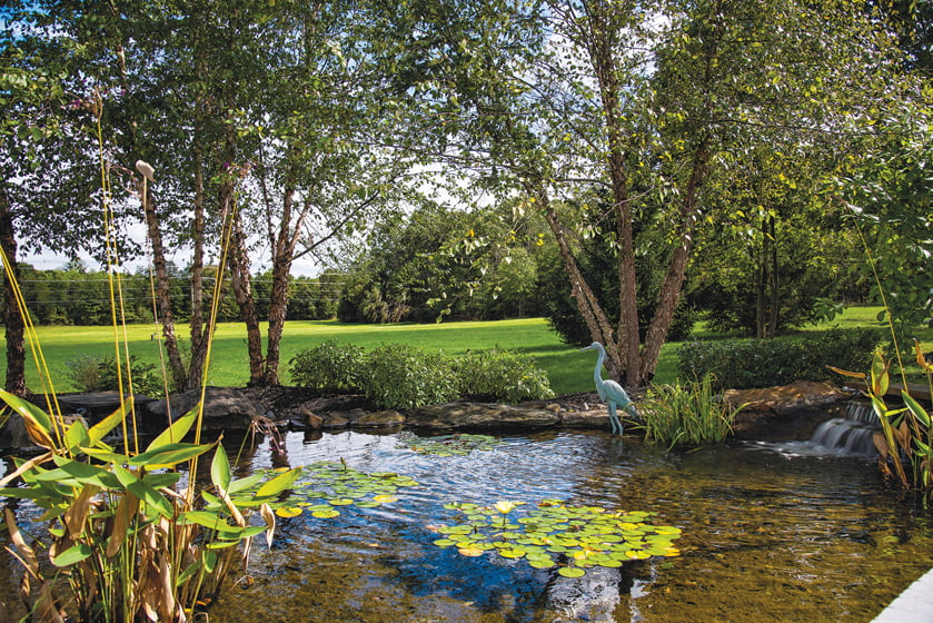 Norman plans to enlarge and stock a pond on the property to accommodate fishing.