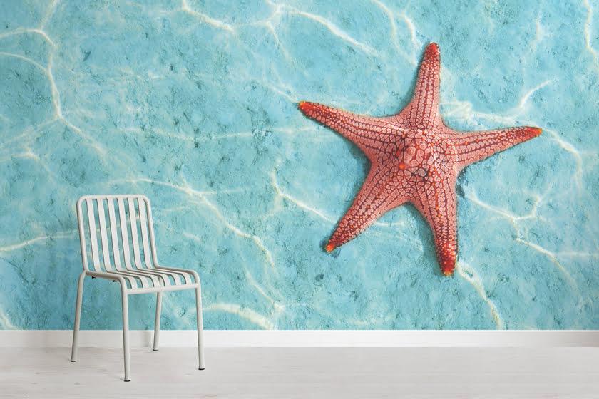 The Orange Starfish Wallpaper Mural.