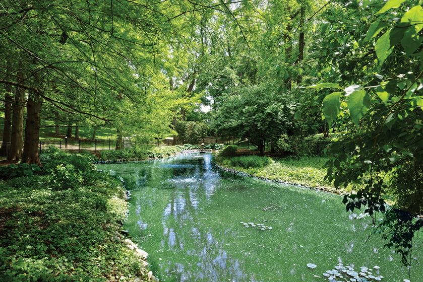 The home's four-acre grounds feature a picturesque pond.