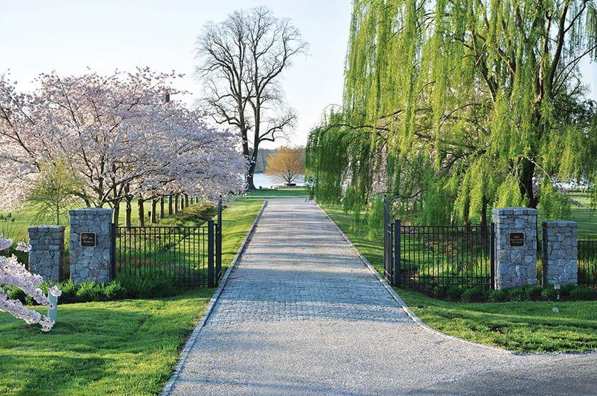 The main drive to The Willows features cherry and willow trees.
