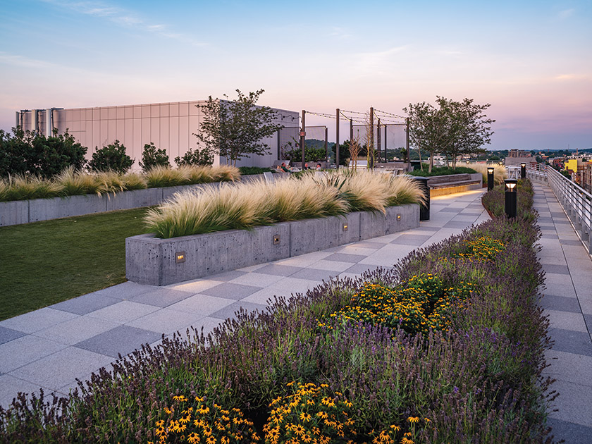 Landscape Architecture Bureau created an outdoor oasis on the rooftop of The Apollo, an apartment building In DC.