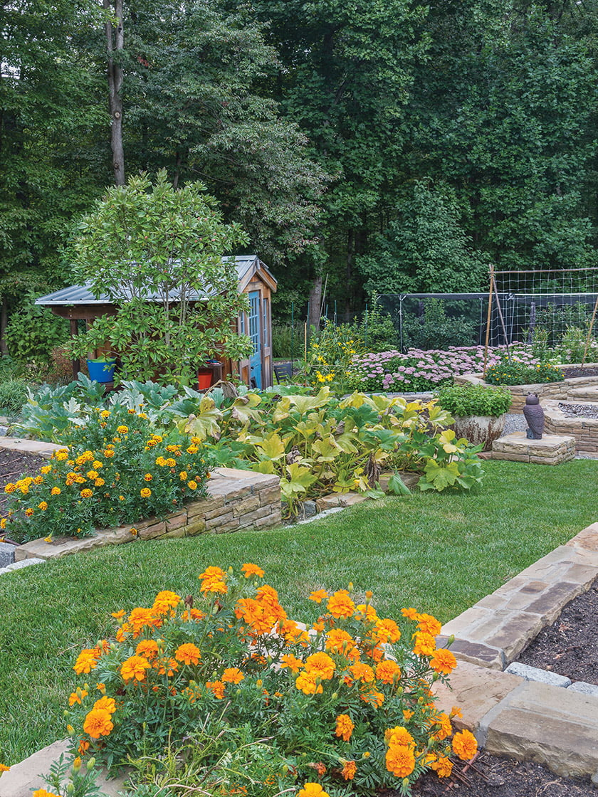 Landscape architect H. Paul Davis designed an enchanting garden in Bethesda. © Melissa Clark