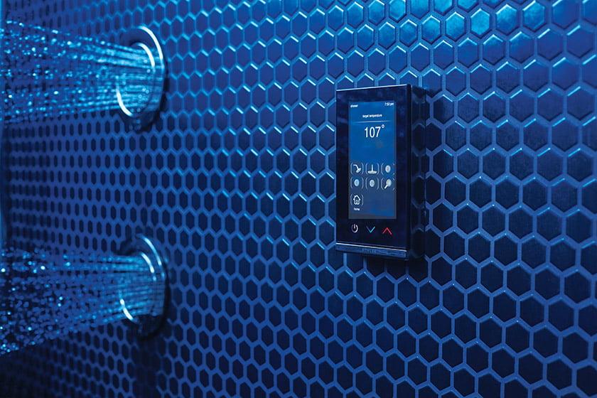 DTV+ Shower System remote.