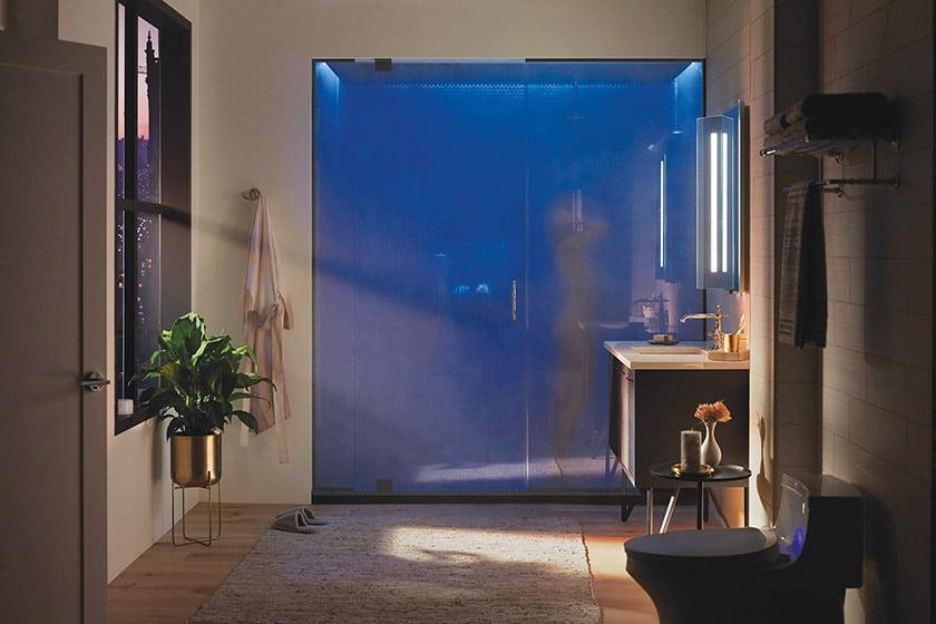 DTV+ Shower System