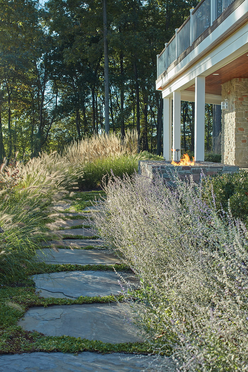 A trail of stepping stones leads through semi-wild plantings of fountain grass and Russian sage.