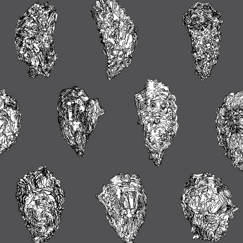 Oysters  wallpaper: Black White on Charcoal.