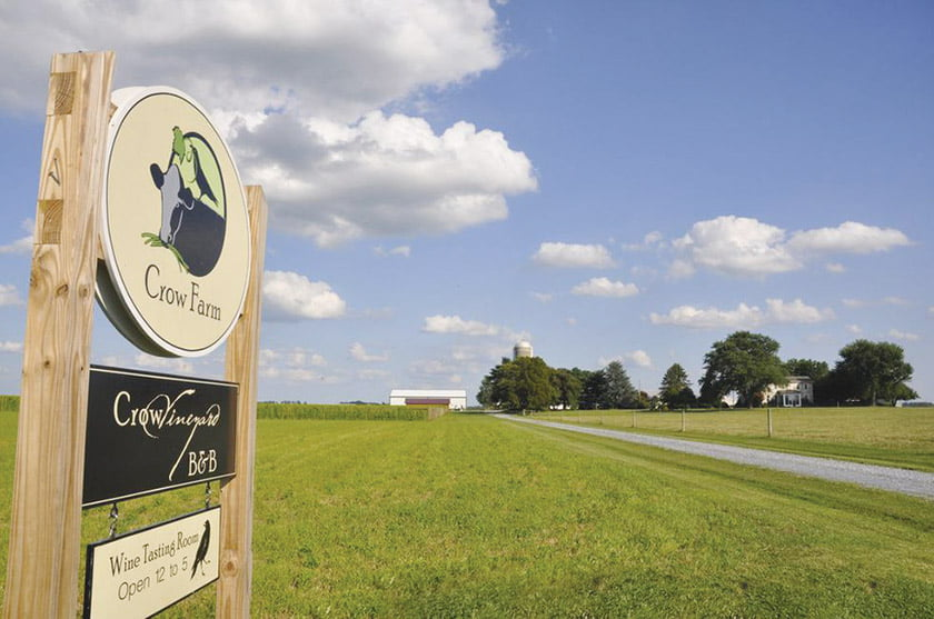 Crow Vineyard & Winery welcomes visitors near Chestertown.