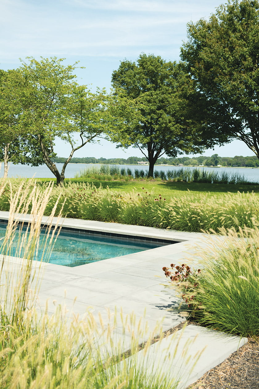 Coneflowers and fountain grass rim the pool without blocking the views. Photo: Mason Summers