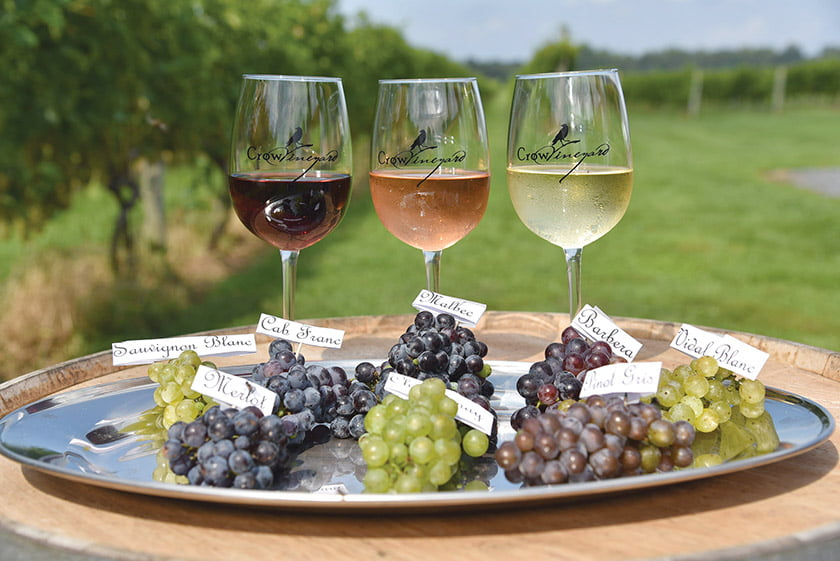Crow Vineyard & Winery harvests an assortment of grapes in the production of its wine.