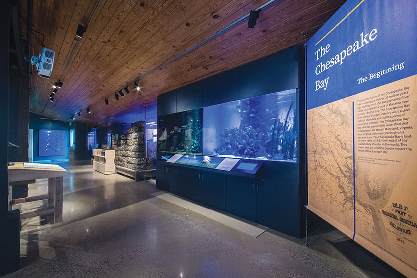 In Bay Health, an aquarium compares the quality of the bay's waters now and in the pristine era before human contact.